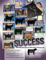 August 2008 Miller Cattle Co Ad